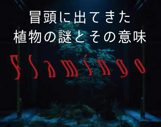 米津玄師フラミンゴ冒頭に出てきた植物の意味