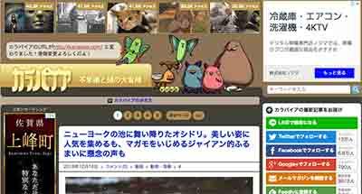 カラパイアブログのトップ画像
